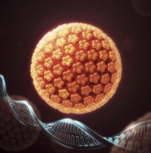 人乳头瘤病毒的病因有哪些