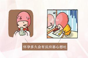 怀孕多久会有反应恶心想吐,早孕反应的时间