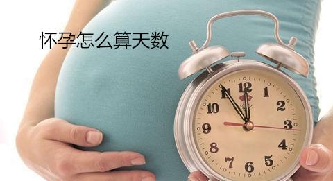 【孕妈必知】怀孕怎么算天数★4种方式简单算出怀孕天数..